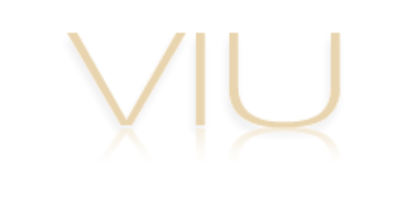 VIU logo, Web development